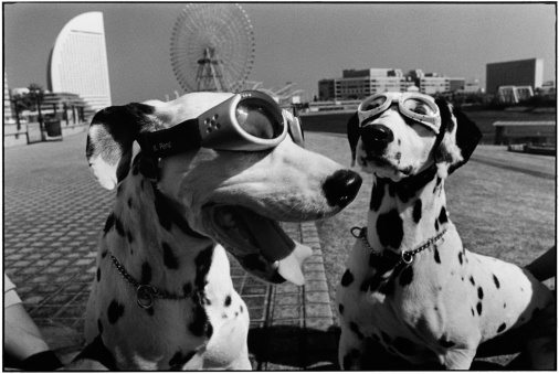 NYC84004-JAPAN.-Yokohama.-2003.