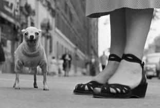 USA. New York City. Circa 1950.