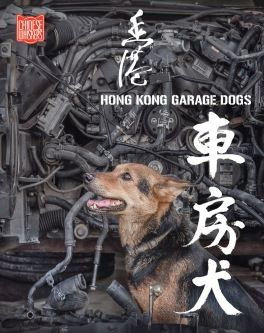 00 HK Garage Dogs book cover flat